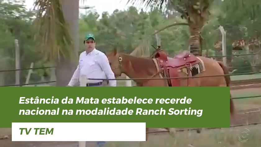 Estância da Mata – TV Tem – Recorde Nacional de Ranch Sorting